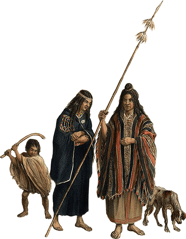 mapuches-2